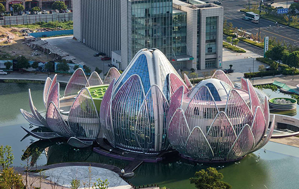 The-Lotus-Building-China1